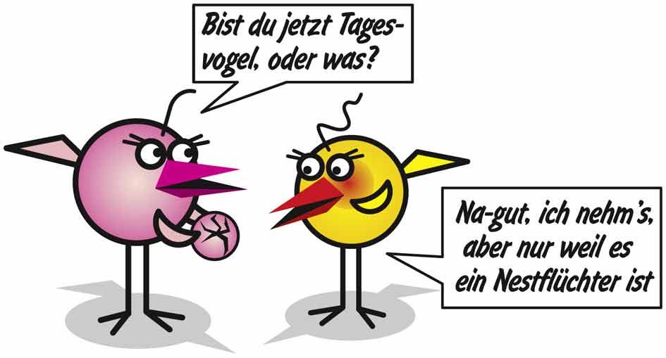 TM_Nestfluechter
